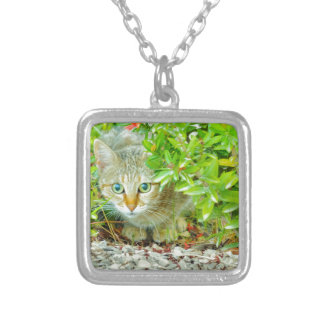 Hidden Domestic Cat with Alert Expression Silver Plated Necklace