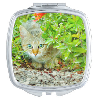 Hidden Domestic Cat with Alert Expression Travel Mirrors