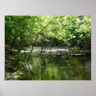 Hidden Marsh Poster