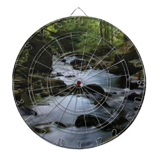 hidden stream in forest dartboard