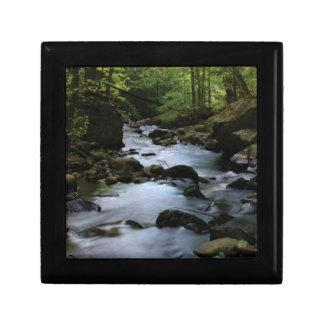 hidden stream in forest gift box