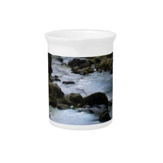 hidden stream in forest pitcher