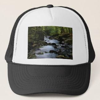 hidden stream in forest trucker hat
