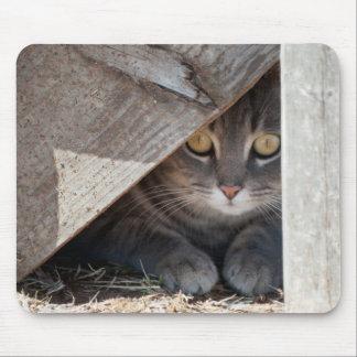 hide-a-kitty mousepads
