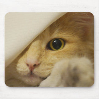 Hide and Seek Cream Colored Cat Mouse Pad