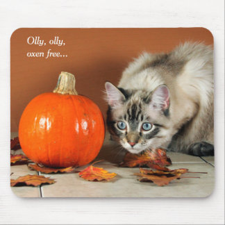Hide & Seek Siamese Cat with Pumpkin Funny Mouse Pad