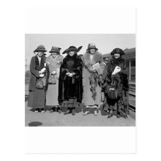 Hide Your Pets: 1923 Postcard