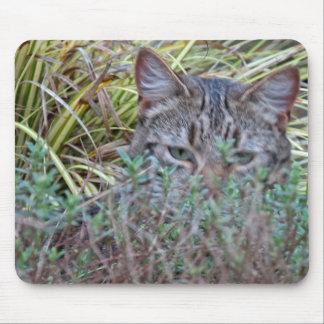 Hiding Cat Mouse Pad