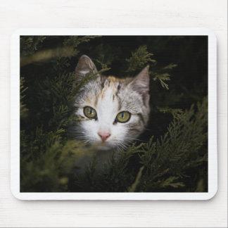 Hiding Kitten Mouse Pad