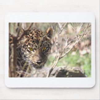 Hiding Leopard Mouse Pad