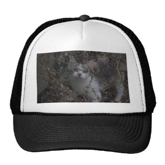 Hiding Place Mesh Hats