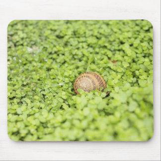 Hiding Snail Mouse Pad
