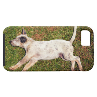 High angle of a dog lying in the grass sleeping. iPhone 5 case
