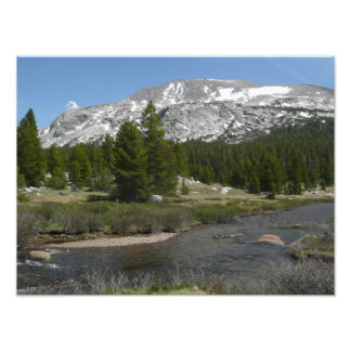 High Country Mountain Stream Photo Print