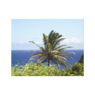 High Def Photography-Maui Coastal View Stretched Canvas Print