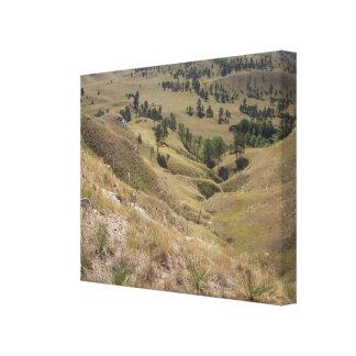 High Desert Hills Canvas Print