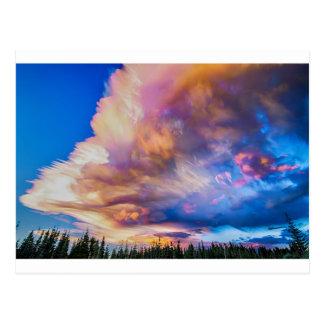 High Elevation Forest Sunset Sky Timed Stack Postcard