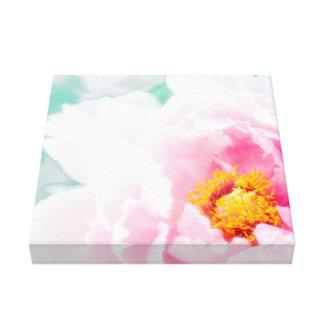 High Key Pink Peony Flower Canvas Print