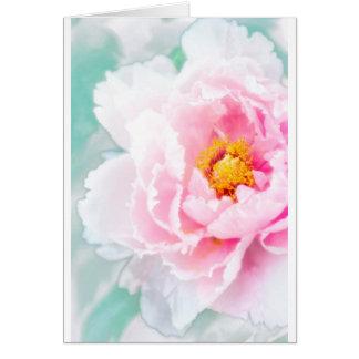 High Key Pink Peony Flower Card