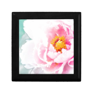 High Key Pink Peony Flower Gift Box