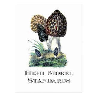 High Morel Standards Postcard