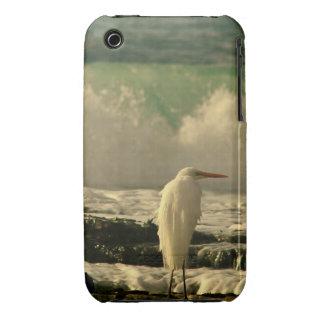 High Tide Bird iPhone 3 Case