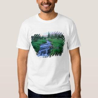 HIGH UINTAS WILDERNESS, UTAH. Stillwater Fork Tee Shirts
