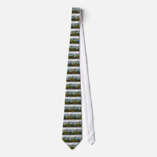 High wing aircraft, blue & white, Alaska Tie