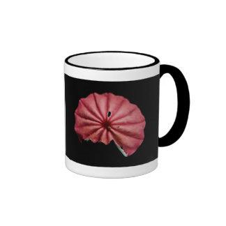 higher understanding mug