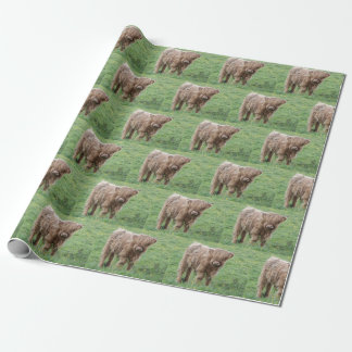 Highland baby cow wrap wrapping paper