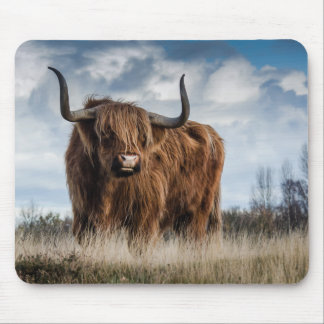 Highland Bull Mouse Pad