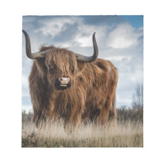 Highland Bull Notepads