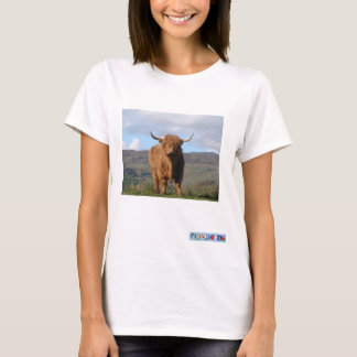 Highland Bull Pic T shirt