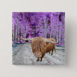 Highland cattle 15 cm square badge