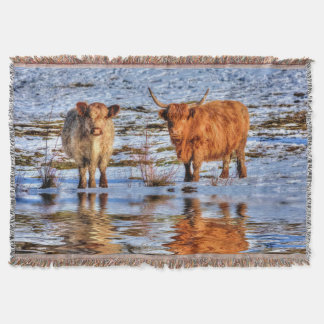 Highland Cattle in Winter Snow Throw Blanket