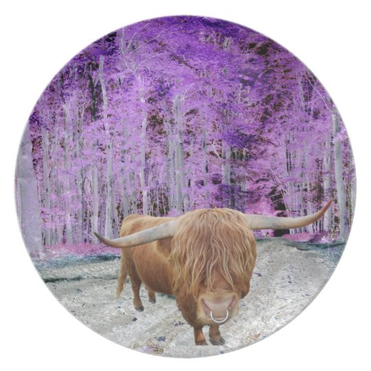 Highland cattle plate
