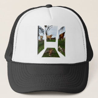 Highland Cow, Dimensional Art,  Black Truckers Cap