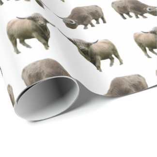 Highland Cow Frenzy Wrapping Paper (Choose colour)