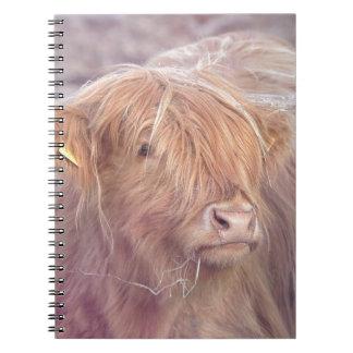 Highland Cow, Highland Cattle Notebook