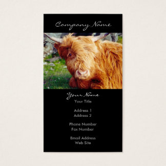 Highland Cow Photo Business Card