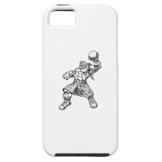 highland lion iPhone 5 case