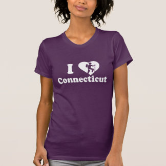Hike Connecticut T-Shirt