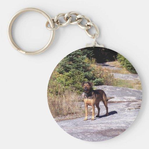 Hiking Dog Keychain