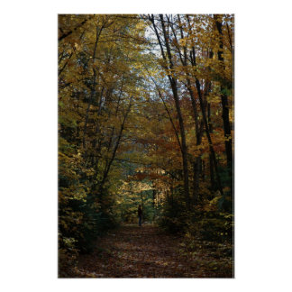 Hiking in the Autumn Colors Poster