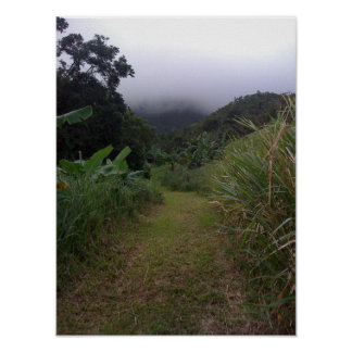 Hiking Into the St. Kitts Mist Poster