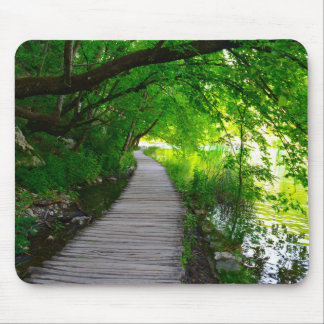 Hiking Path in Plitvice National Park in Croatia Mouse Pad