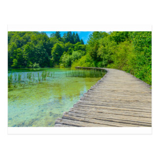 Hiking Path in Plitvice National Park in Croatia Postcard