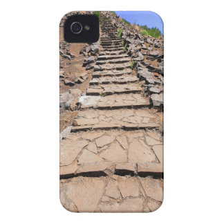 Hiking trail leading up the mountain on Madeira Case-Mate iPhone 4 Cases