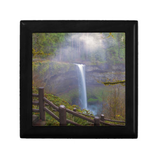 Hiking Trails at Silver Falls State Park Gift Box