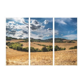 Hill Canvas Print